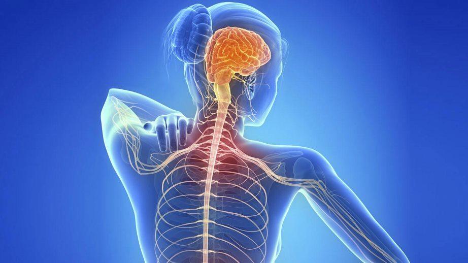 La Esclerosis Múltiple o EM